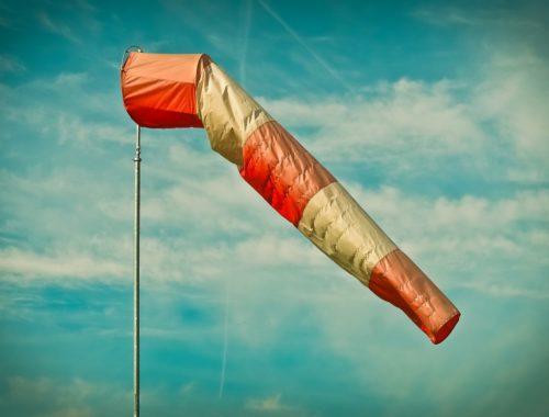 Держать нос по ветру и узнать ещё 7 полезных фраз